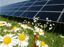(Italiano) Delibera AEEG 243/2013: ulteriori interventi relativi agli impianti di generazione distribuita